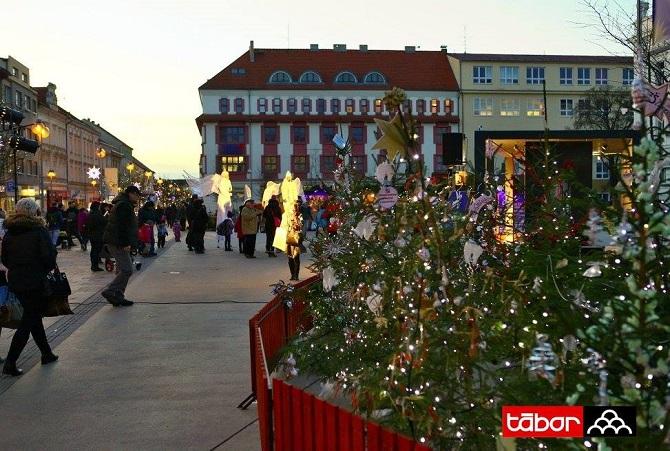 vánoční strom v Táboře