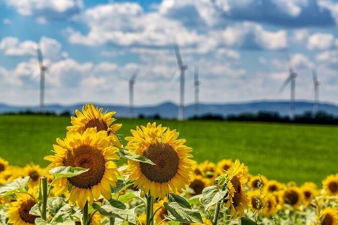 zelená elektřina z obnovitelných zdrojů