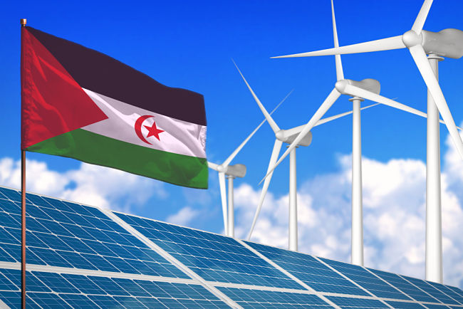 Solární elektrárna měla vzniknout na saharské poušti