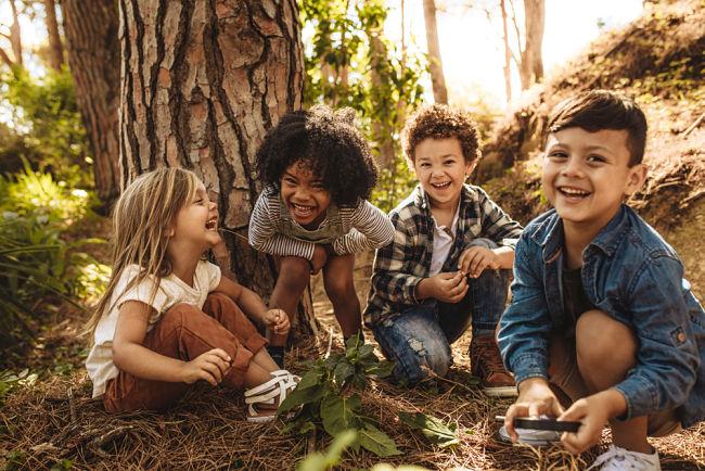 Ekologické programy pro děti.