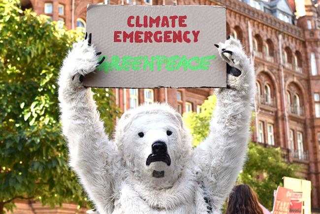 Návrh vlády kritizují rovněž ekologické organizace, například Greenpeace.