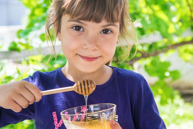Energy globe: Včelí stráž vychovává budoucí včelaře