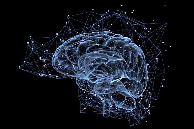 I v dnešní době zůstává lidský mozek pro vědce velkou neznámou.