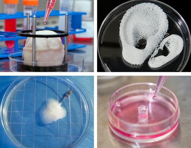 Budou v budoucnu 3D tiskárny pomáhat v medicíně?